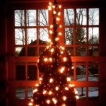 An upright bass lit up with christmas tree lights