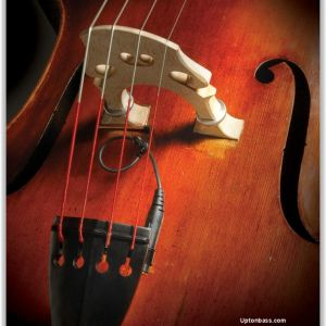 The Realist Double Bass Pickup by David Gage
