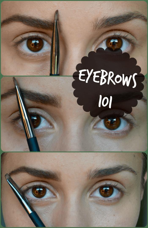 eyebrows101
