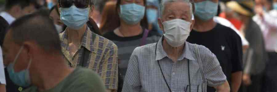 "Descubren cepa de la 'gripa porcina' que podría terminar en ""posible pandemia"""
