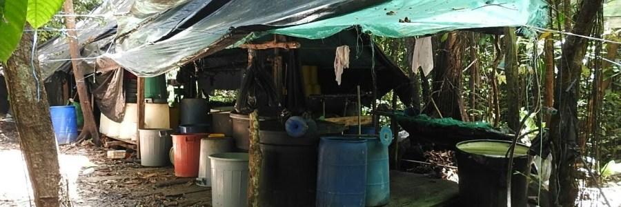 Ejército destruye en Turbo, Antioquia, un laboratorio al parecer  Clan del Golfo para procesar pasta base de coca.