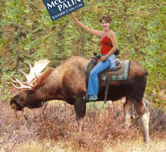 palin-moose1