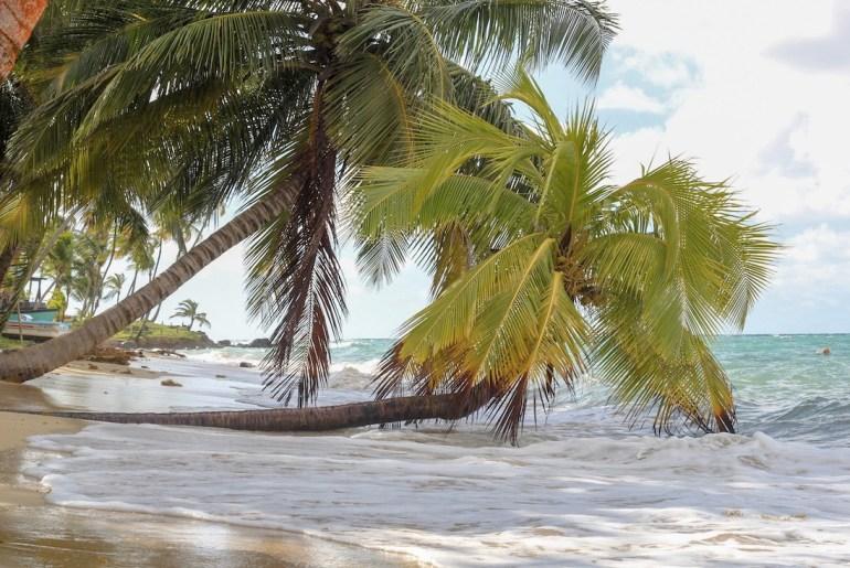 Pieni Maissisaari Little Corn Island