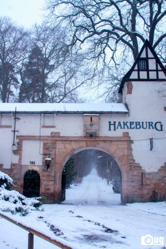 hakeburg-winter-20160123_3717