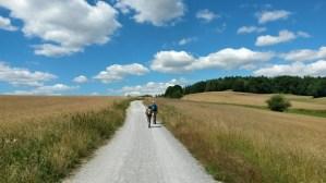 Panoramaweg im Nationalpark Sächsische Schweiz
