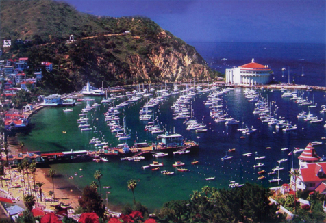 Things To Do In Catalina Island Cart