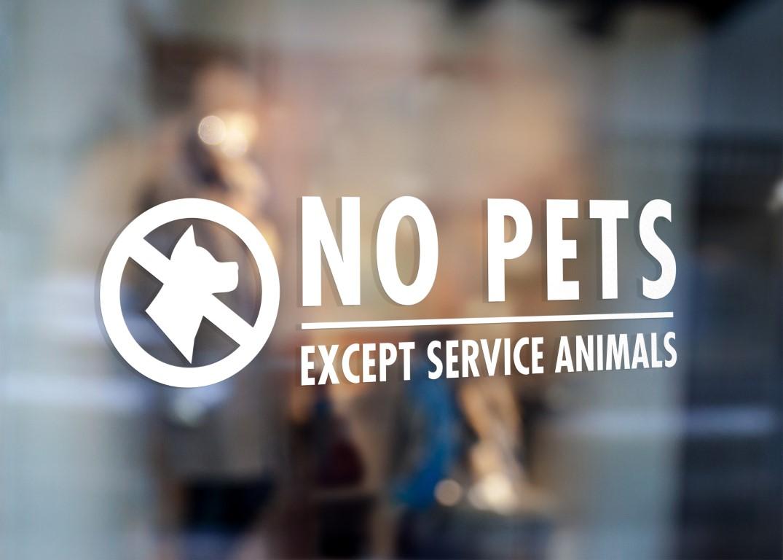 No Pets Allowed Vinyl Sign Sticker