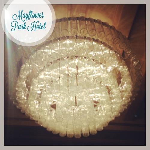 Seattle4Kids - MayflowerPark Hotel - 3