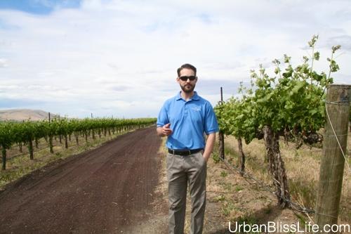 WA Wine Country - Terra Blanca - 05