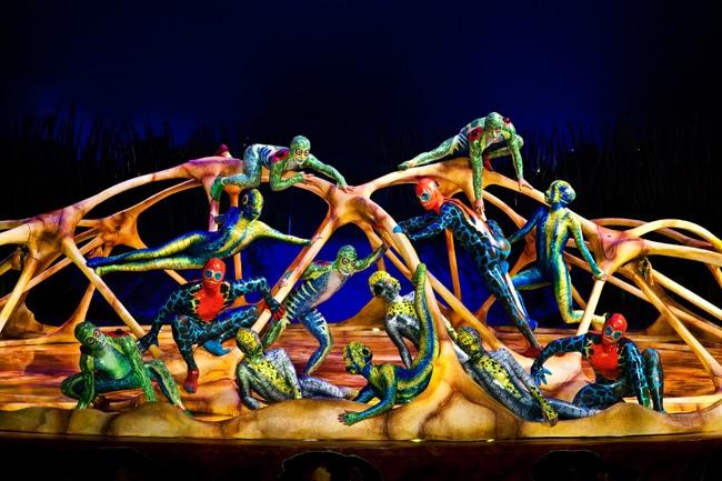 cirqueCirque du Soleil Totem high bars carapace
