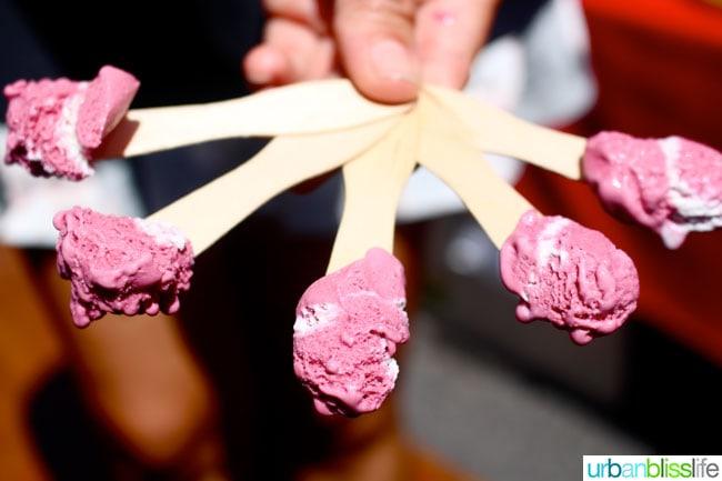 Oregon Berry Festival Salt & Straw Ice Cream