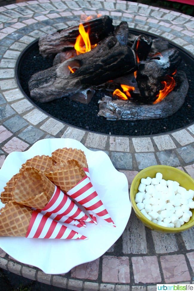 Nutty S'More Cones Sante Nuts