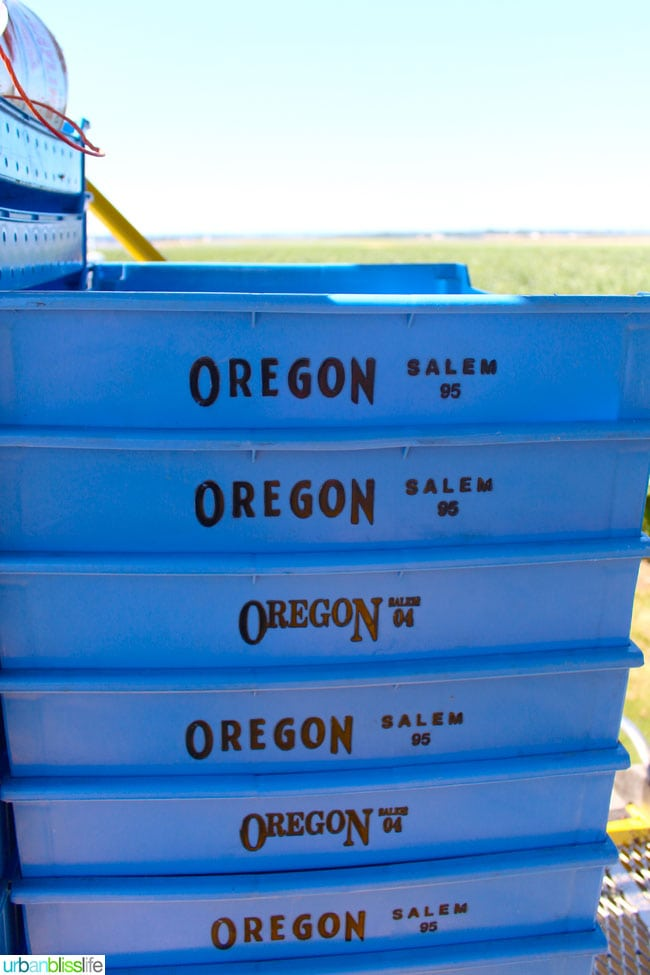 Oregon Fruit Products tour