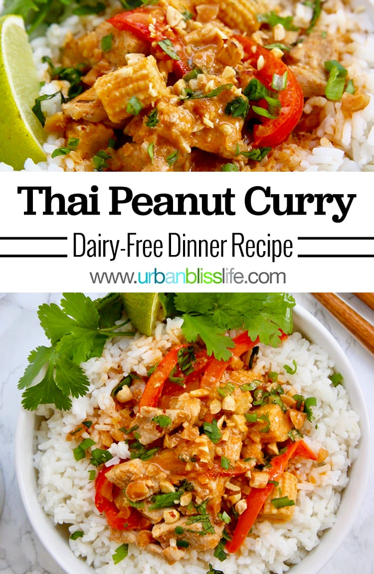 Thai Peanut Curry main image
