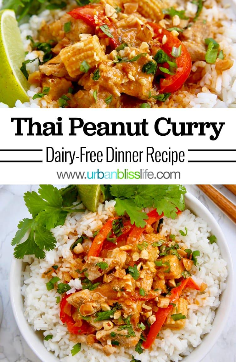 Thai Peanut Curry main image