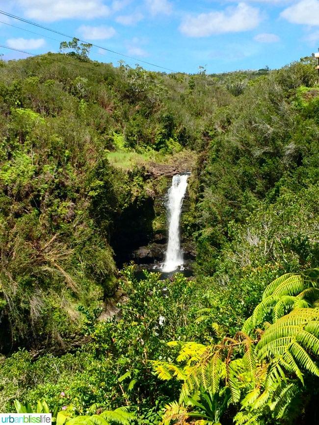Hawaii Zipline Waterfall