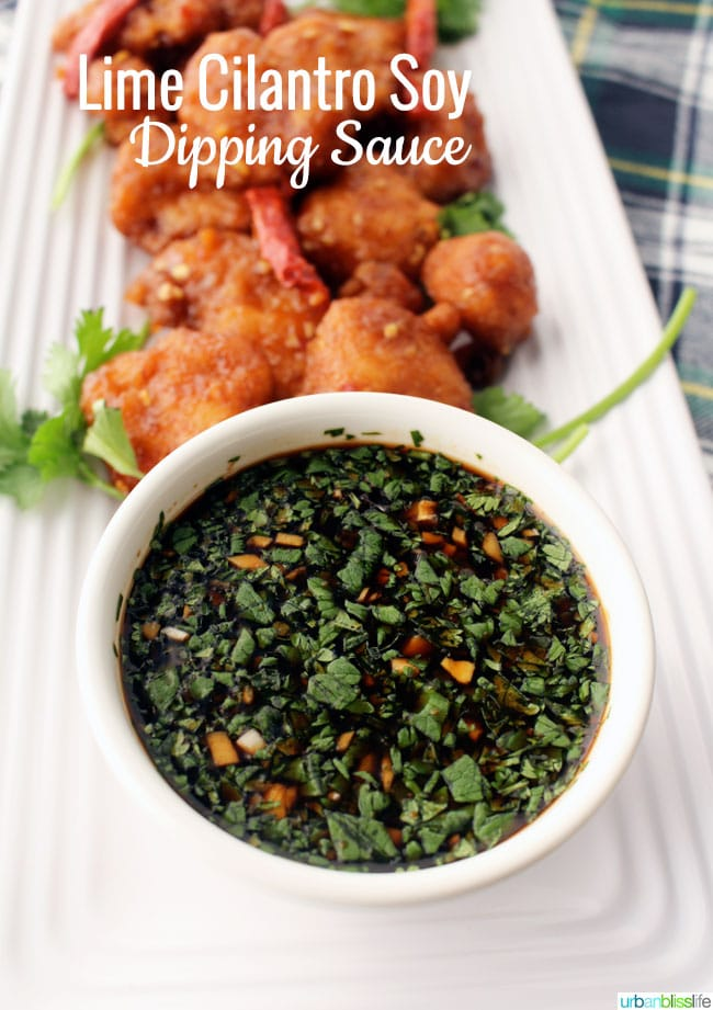 Lime Cilantro Soy Dipping Sauce