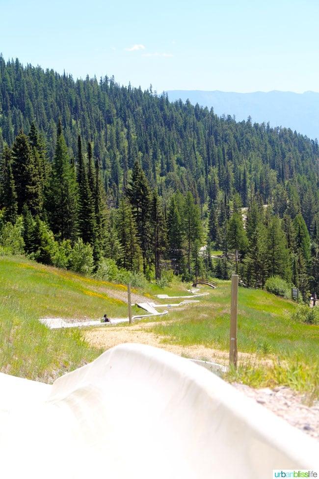 Whitefish Mountain Resort Alpine Slides - Montana travel tips on UrbanBlissLife.com