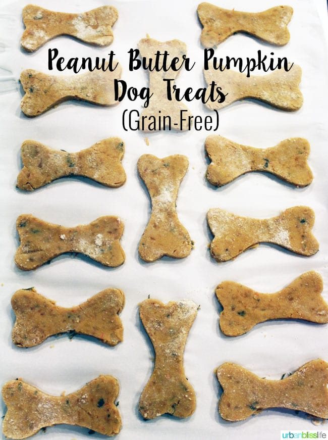 Homemade Dog Bone Treats