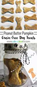Peanut Butter Pumpkin Grain-Free Dog Treats recipe on UrbanBlissLife.com