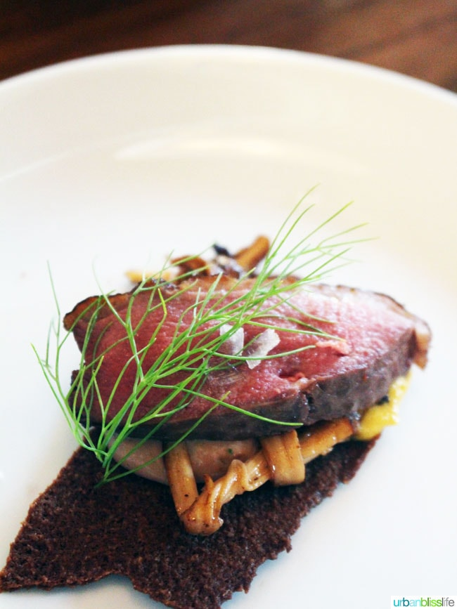Malbec Mushrooms Braised Pork Sirloin