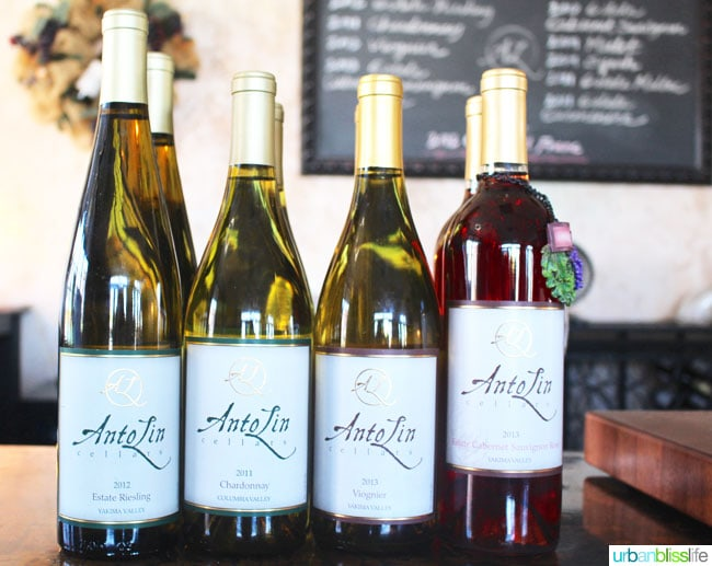 Antolin Cellars in Yakima, Washington - Wine Feature on UrbanBlissLife.com