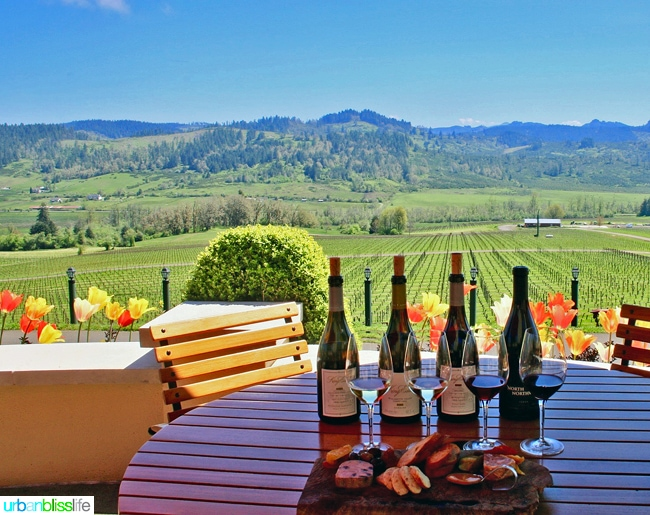 King-Estate-Winery-Tasting-Charcuterie-Views