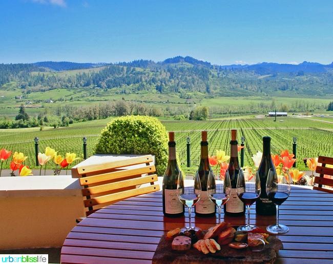 King-Estate-Winery-Tasting-Charcuterie-Views