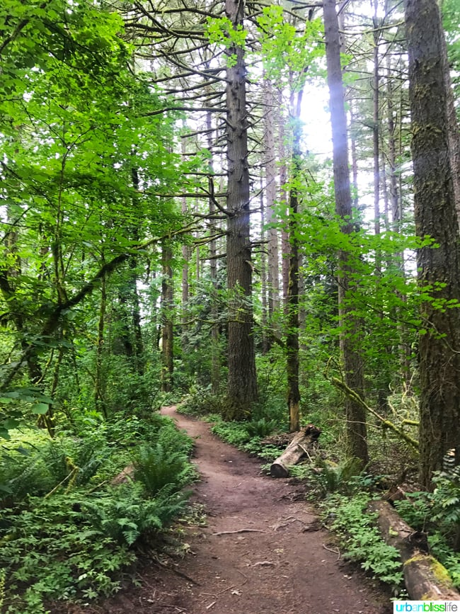 50 Things to Do in Portland, Oregon With Kids During the Summer - Tryon Creek State Park, travel tips on UrbanBlissLife.com.