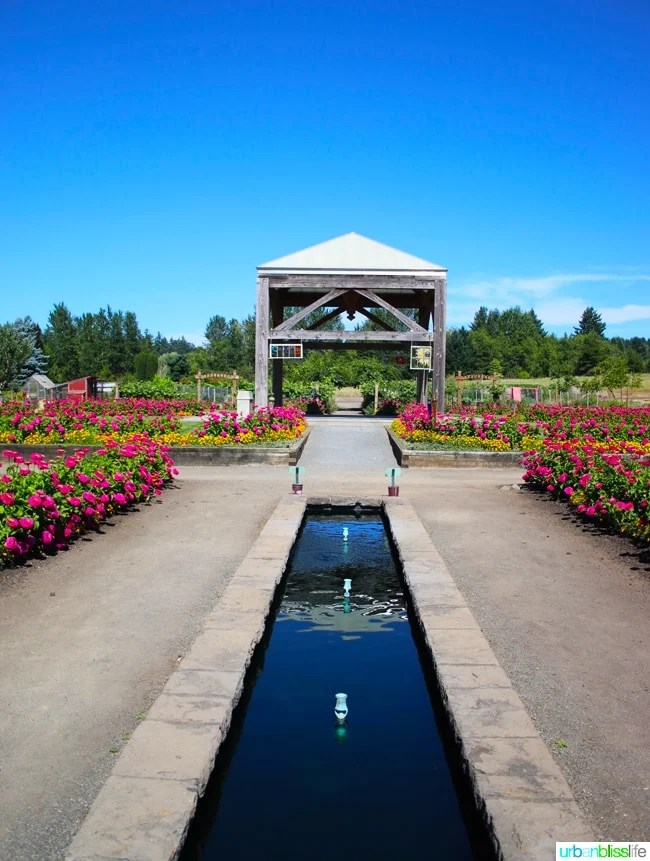 Travel Bliss: The Oregon Garden (Silverton, Oregon)