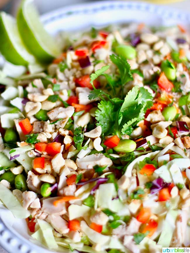 Thai Chicken Salad close up