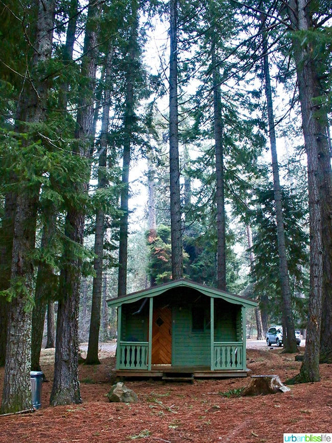green cabins at Suttle Lodge in Sisters, Oregon