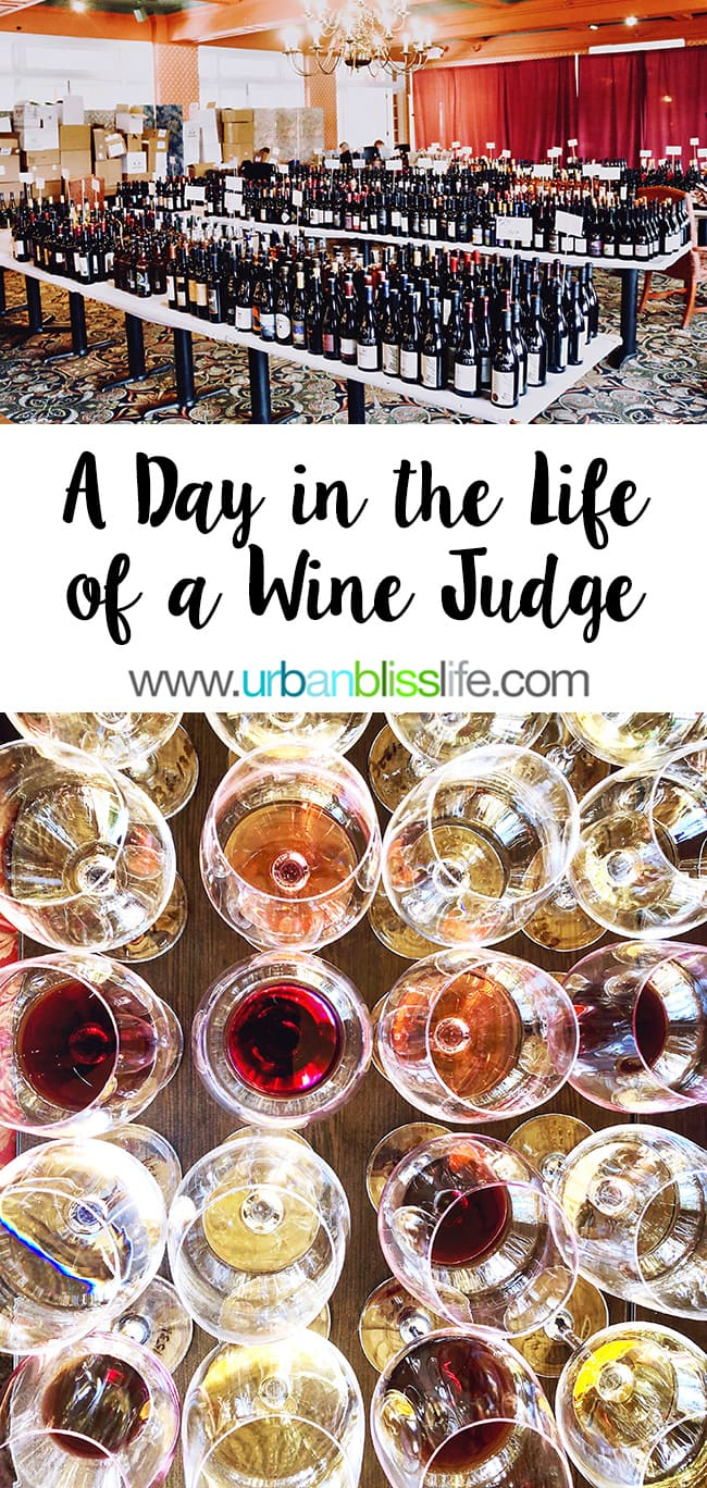 A Day in the Life of a Wine Judge, by UrbanBlissLife.com