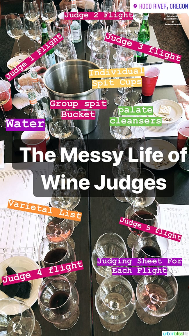 wine competition judging