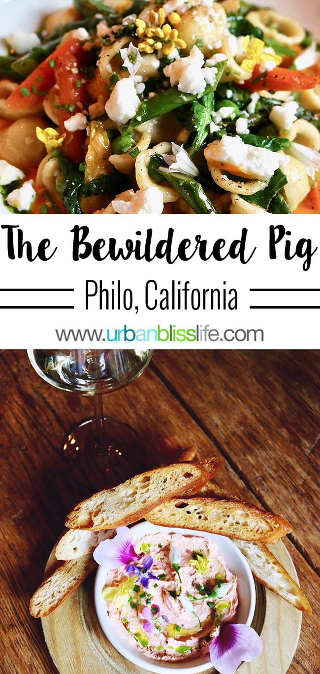 The Bewildered Pig restaurant