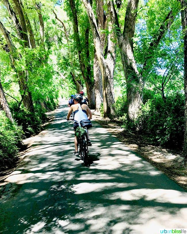 bike tour in Albuquerque, New Mexico