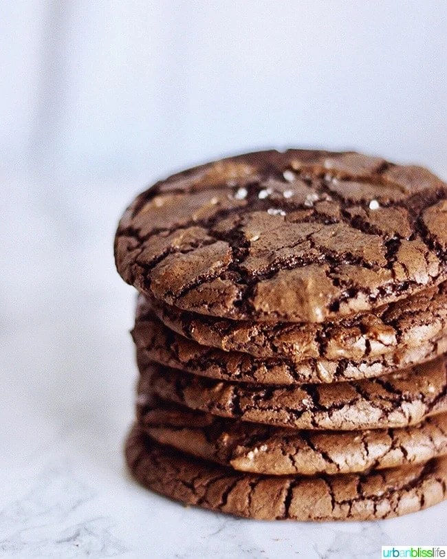 stack of Chewy Chocolate Fudge Cookies