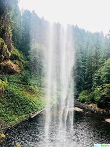 behind the waterfall at Silver Falls State Park