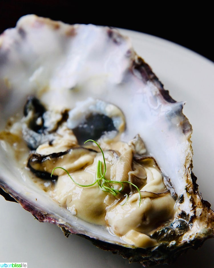oyster at Guinness Storehouse