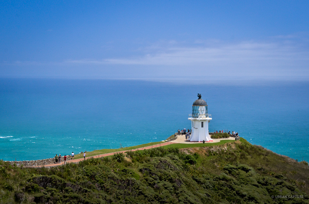 Day 13 Cape Reinga Aupouri Peninsula New Zealand