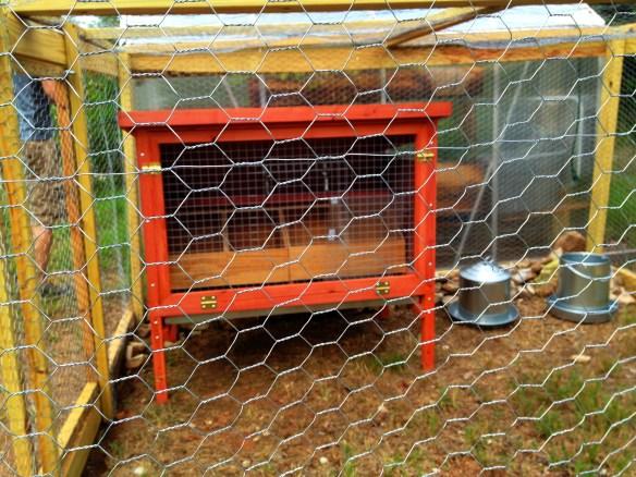 Miranda Lowry's Chicken Coop