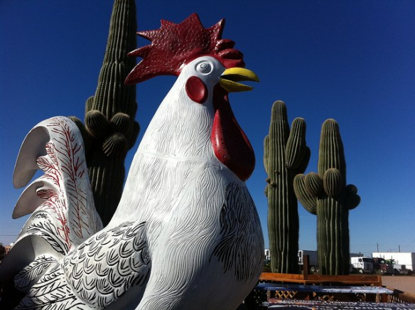 Saguaro Sized Chicken