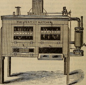 Incubator 1883 - Internet Archive Book Images