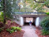 Underpass at Greenbelt