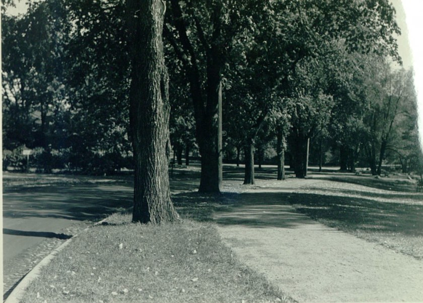"The original caption was: ""Looking east from entrance to Minnehaha Park, showing curbing and walk installed by W.P.A."""