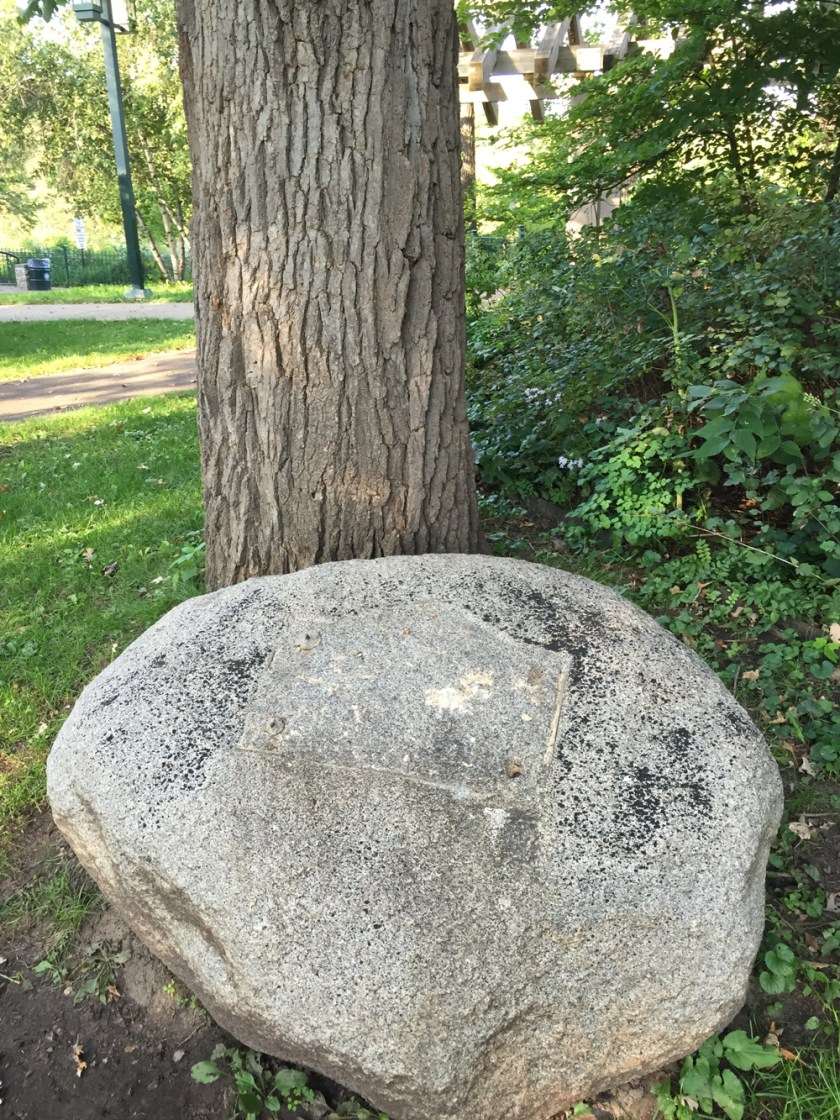 boulder at the base of the tree, no plaque