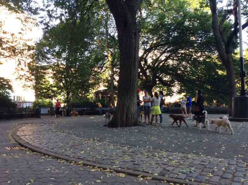Stuyvesant Square Dog Run pet friendly
