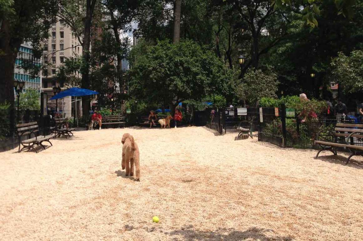 Union Square Dog Park