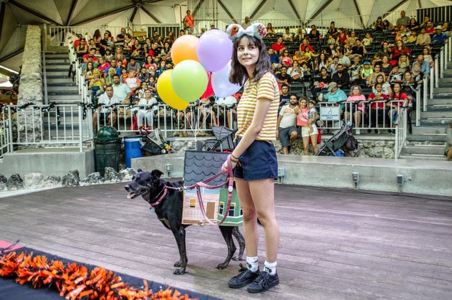 Paws4You Halloween Howl-o-ween Carnival