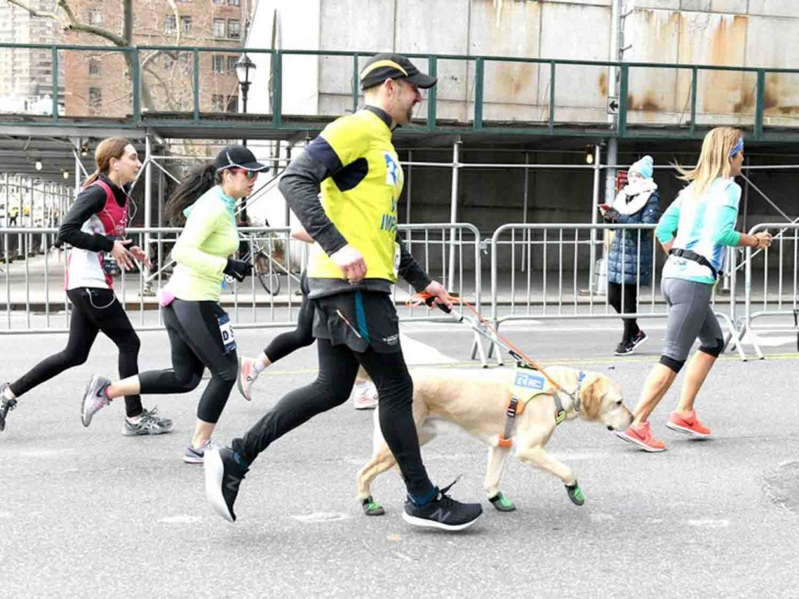 Marathoner Thomas Panek and One of his Guide Dogs Dogs in the News